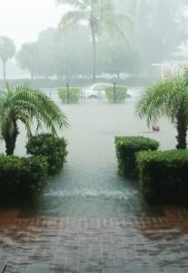 Hurricane season in South Florida hits June 1. Store valuables before they get damaged!